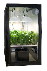 Green Room Grow Tents - Self contained growing rooms.