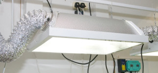 High Intensity Discharge Horticultural Lighting