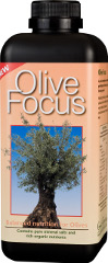 Olive Focus - A unique liquid concentrate for olives.